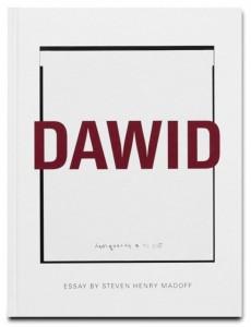 f17271_DAWID_Framsida